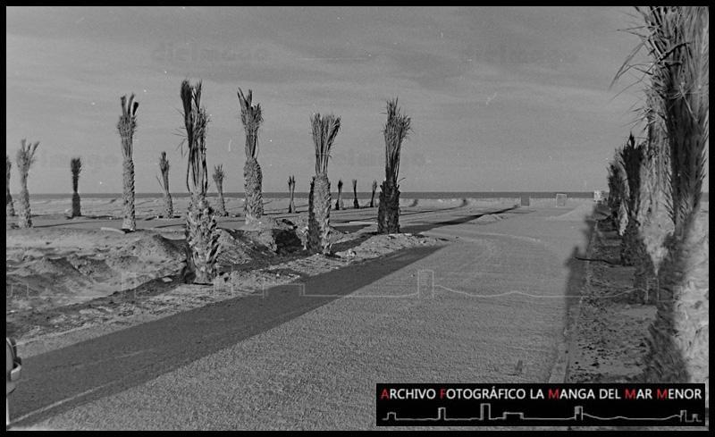 JCL_1966_ENERO_01-06-2015 359